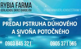 Rybia farma Gerlachov