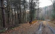 OOCRBJ-Kyslikovacesta-1.jpg