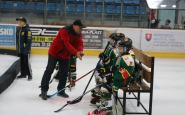 hokejovy turnaj ahoj (18).JPG