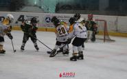 hokejovy turnaj ahoj (15).JPG