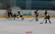 hokejovy turnaj ahoj (1).JPG