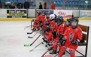 hokejovy turnaj ahoj (6).JPG