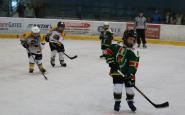 hokejovy turnaj ahoj (9).JPG