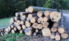 Ukradol drevo, chcel kúriť. Hrozí mu väzenie
