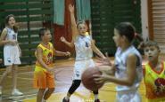 basket CJS2019 (10).JPG