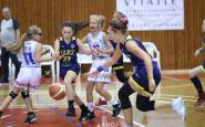 basket CJS2019 (24).JPG