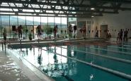 plavanie (1).png