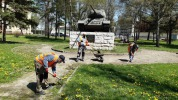 Mesto Kežmarok začalo s kosením trávnatých plôch
