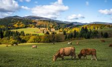Letnú sezónu v Prešovskom kraji zachránili domáci návštevníci